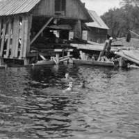 0045-SwimmingatBailyMillPond.jpg